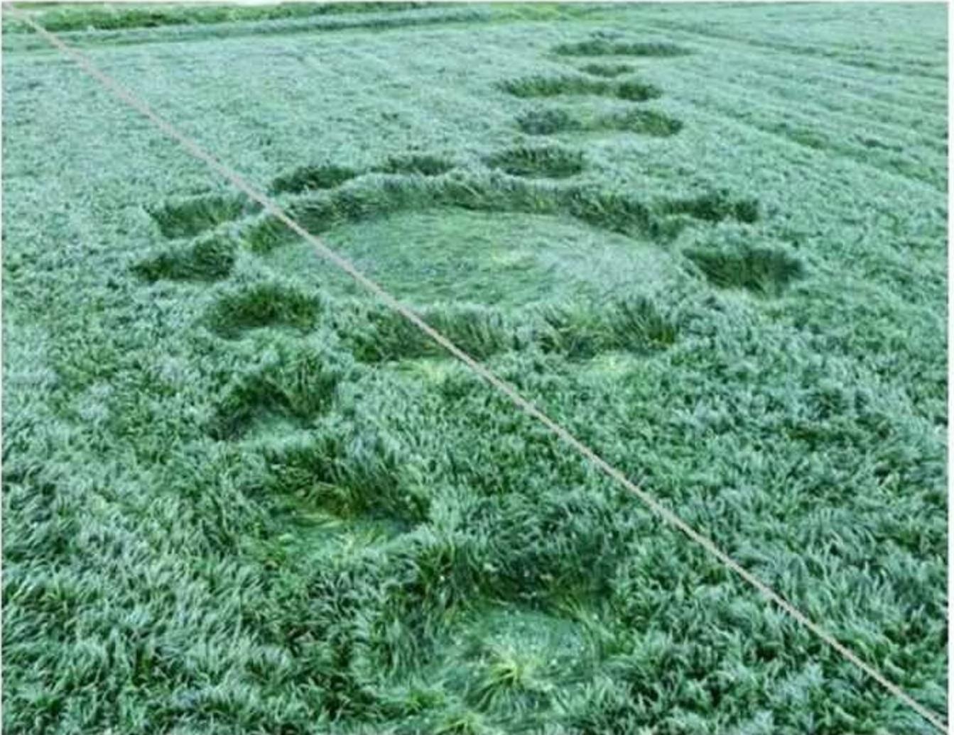 Crop Circles de van der Broken (4)