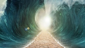 filo milagro